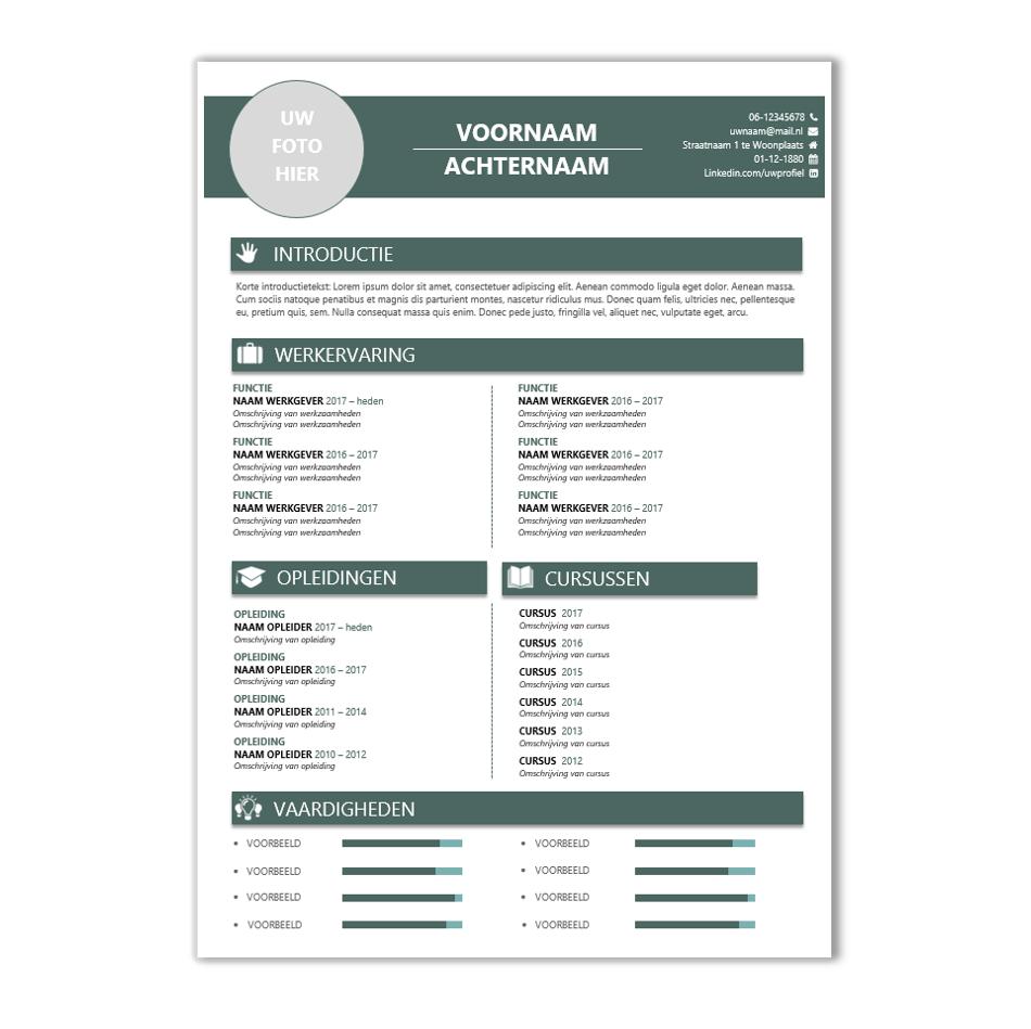voorbeeld cv in word Download CV voorbeeld 41   CV template | CV voorbeelden.nl