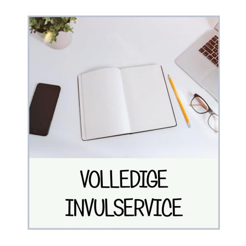 CV template invulservice