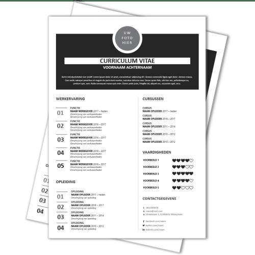 CV voorbeeld 19a2