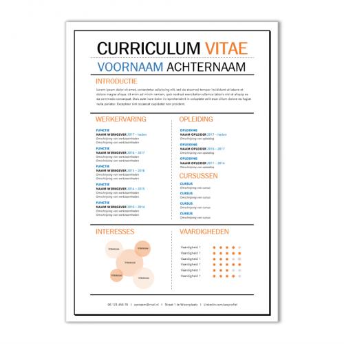 Voorbeeld CV template 97b