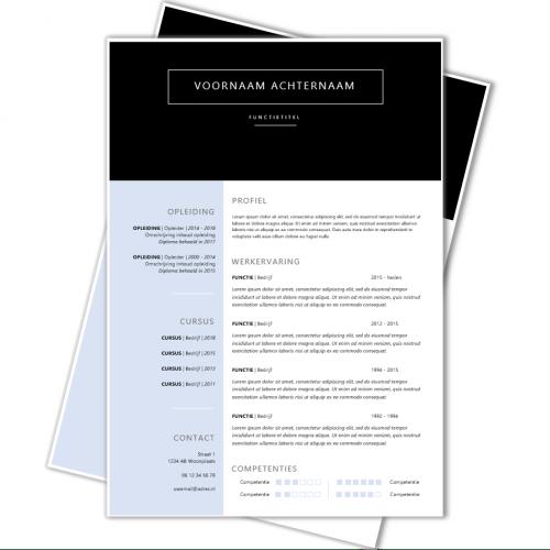 CV template 98a
