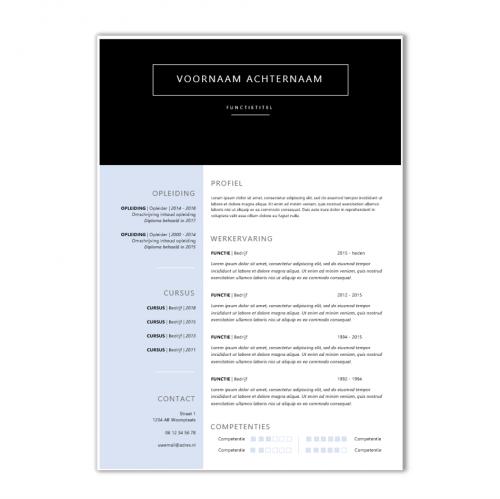 Voorbeeld CV template 98b